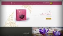 طراحی سایت شرکت زعفران رستاک