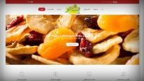 طراحی سایت گروه صنایع غذایی چشالو